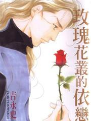 玫瑰花丛的依恋
