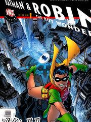 全明星蝙蝠侠与神奇小子罗宾