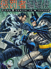 惩罚者-蝙蝠侠:杀戮骑士